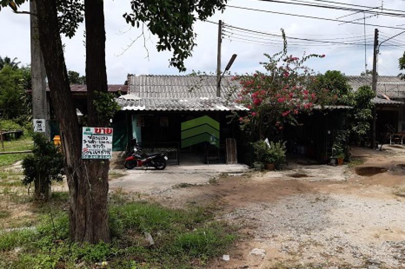 หมู่บ้าน ชาววัง ขายด่วน ที่ดิน พร้อมสิ่งปลูกสร้าง ห้องแถว 2 ห้อง เนื้อที่ 100 ตร.ว ทำเลดี ติดถนน ใกล้โรงพยาบาลแว้ง เหมาะค้าขาย ,ประกอบธุรกิจ, ออฟฟิศ, พักอาศัย