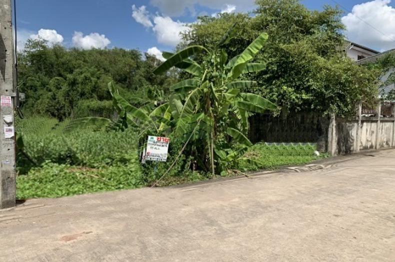 ขายด่วน ที่ดินเปล่า ซอย รามอินทรา 5 แยก 6 เนื้อที่ 99.50 ตร.ว อนุสาวรีย์ บางเขน ทำเลดี เหมาะปลูกบ้านพักอาศัย, ออฟฟิศ, ประกอบธุรกิจ
