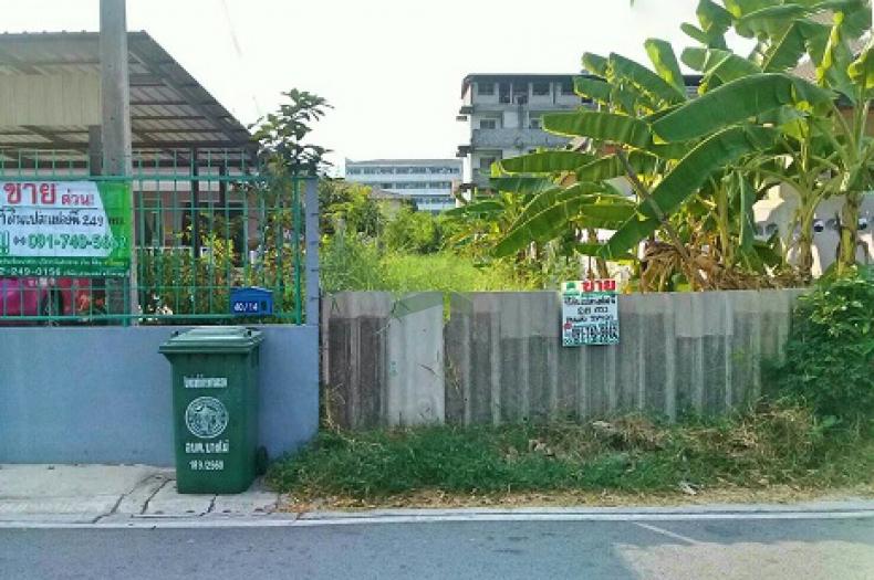 ขายด่วน ที่ดินเปล่าถมแล้ว ซอย วัดโชติการาม ถนน นครอินทร์ พระราม5 เนื้อที่ 249 ตร.ว บางไผ่ เมืองนนทบุรี ทำเลดี เหมาะปลูกบ้านพักอาศัย