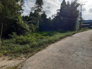 N0600948, ขายด่วน ที่ดิน พร้อมบ้านชั้นเดียว ถนน โคกเคียน เมืองนราธิวาส เนื้อที่ 381.30 ตร.ว. ทำเลดี เหมาะพักอาศัย