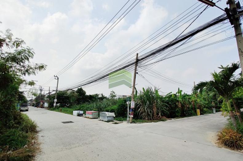 ขายด่วน ที่ดินเปล่า เนื้อที่ 340 ตร.ว หมู่บ้าน ธารทอง 2 ซอยวัดลาดปลาดุก แปลงมุม ติดถนน 3 ด้าน อยู่ต้นซอย ทำเลดี ต่อรองได้