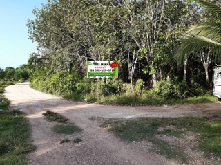 N0600973, ขายที่ดิน พร้อมสวนยางพารา เนื้อที่ 3 ไร่ 3 งาน 69.8 ตารางวา ซอย พณาสนฑ์ ถนน พณาสนฑ์ เมืองนราธิวาส